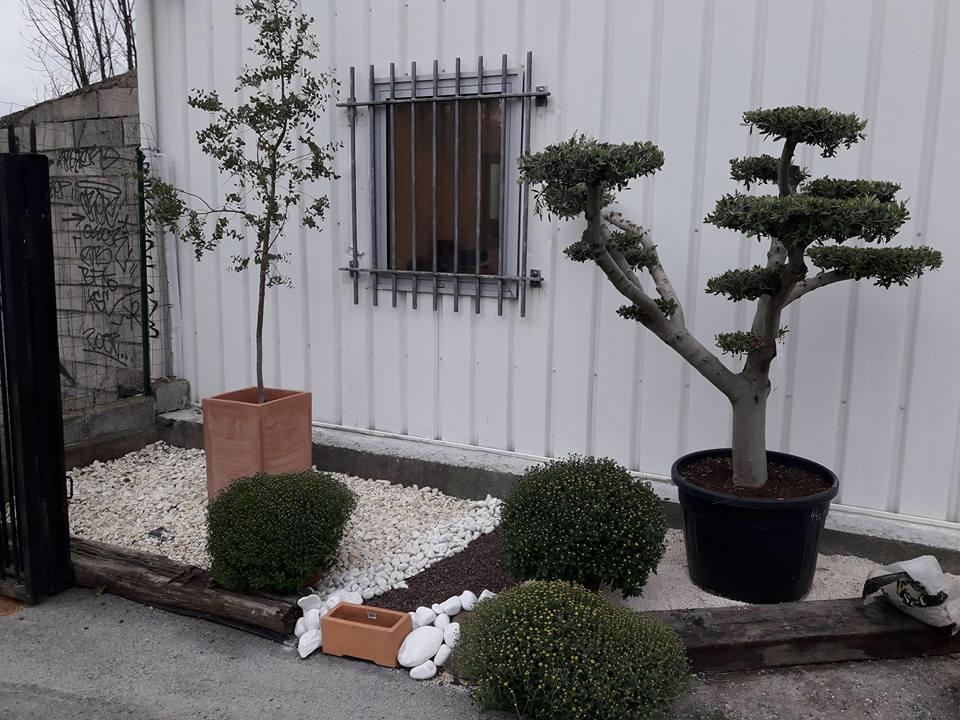 jardin heloise pepiniere conseil paysagiste production vente rousson saint florent auzonnet gard. Black Bedroom Furniture Sets. Home Design Ideas